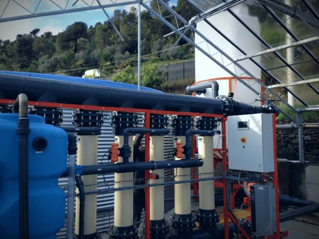 Algalimento liqoflux algae